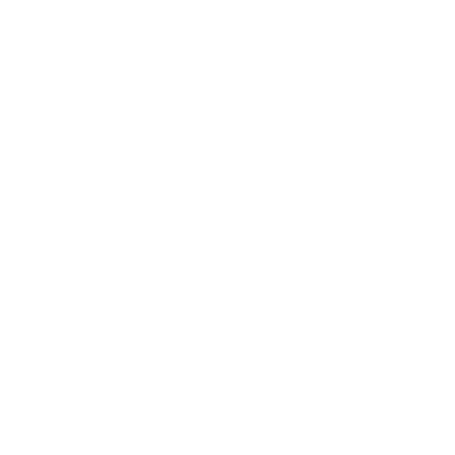 logo révision blanc
